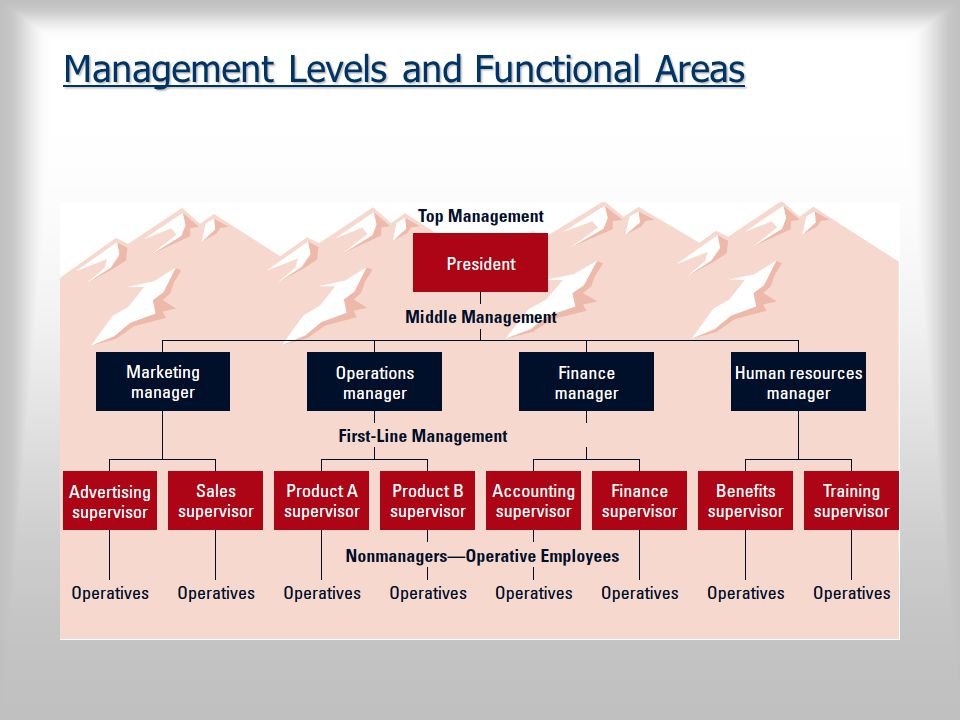 Management Levels and Functional Areas