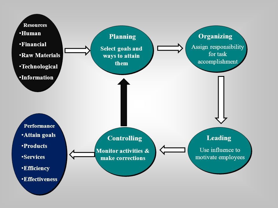 Planning Organizing Controlling Leading