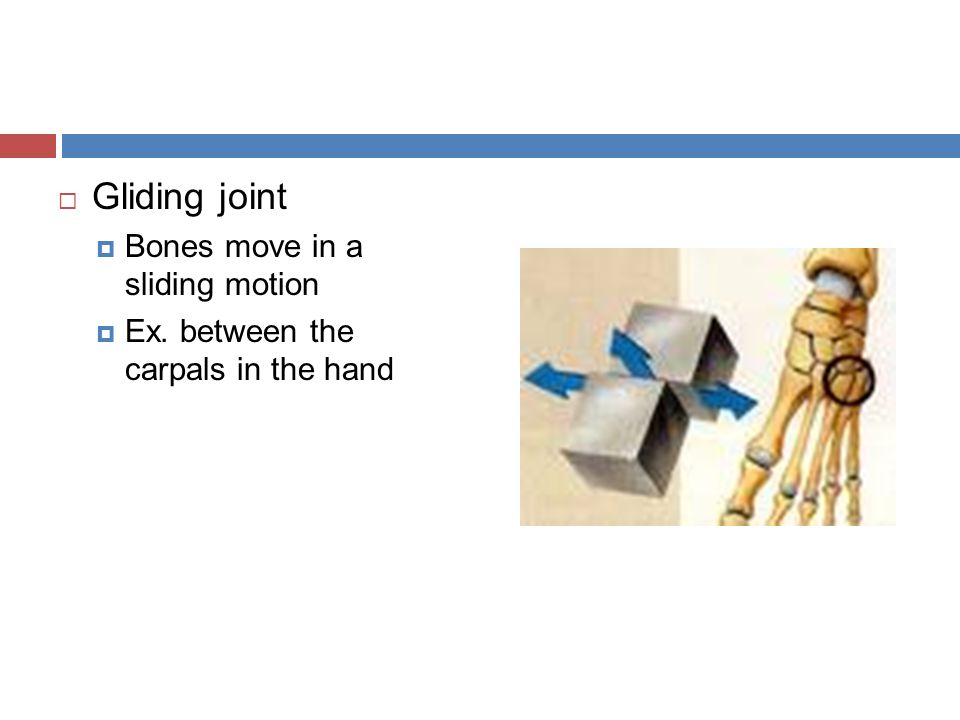Gliding joint in foot