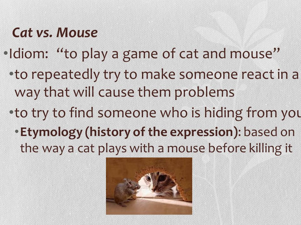 Game Of Cat And Mouse Idiom