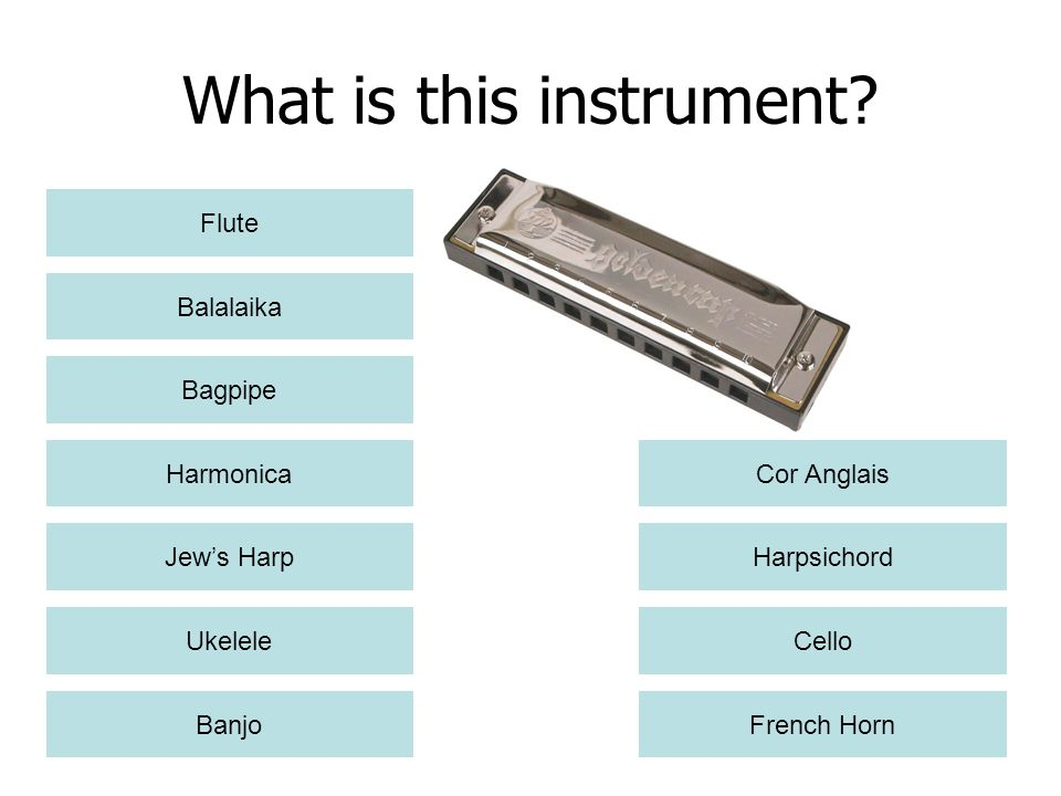 What is this instrument
