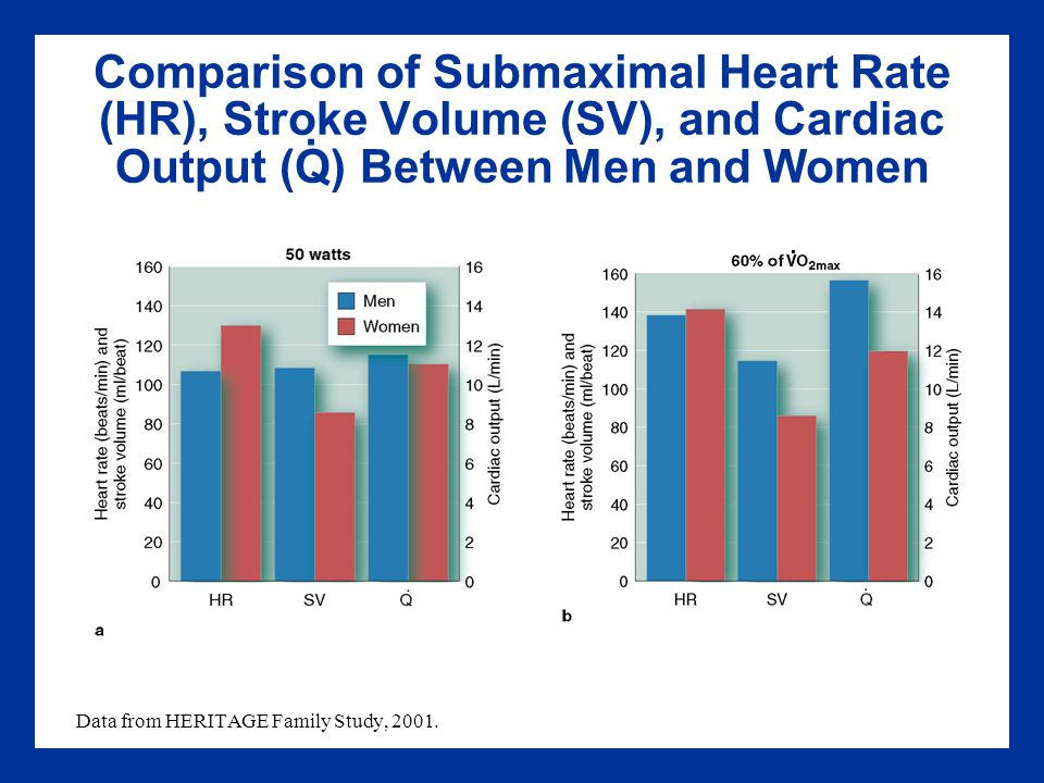 the rate of recovery between male and female The formula for peak exercise heart rate that doctors have used for decades in tests to diagnose heart conditions may be flawed because it does not account for differences between men and women .