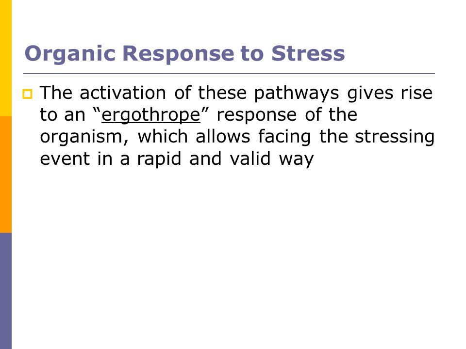Organic Response to Stress