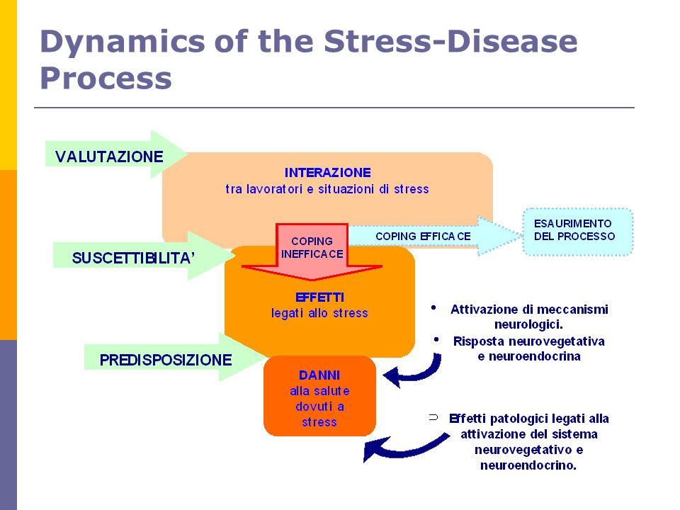 Dynamics of the Stress-Disease Process