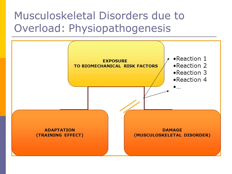 TO BIOMECHANICAL RISK FACTORS (MUSCULOSKELETAL DISORDER)‏
