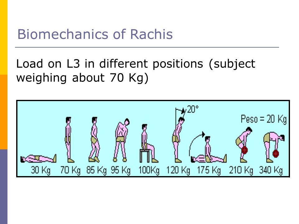 Biomechanics of Rachis