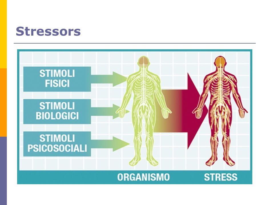 Stressors 84