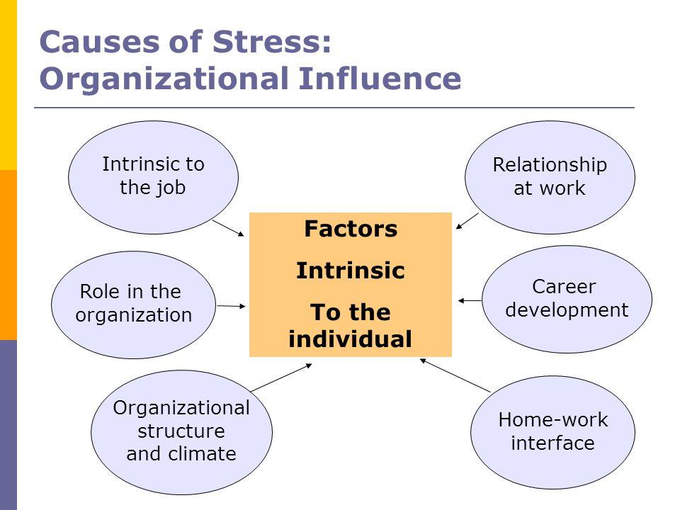 Organizational Influence