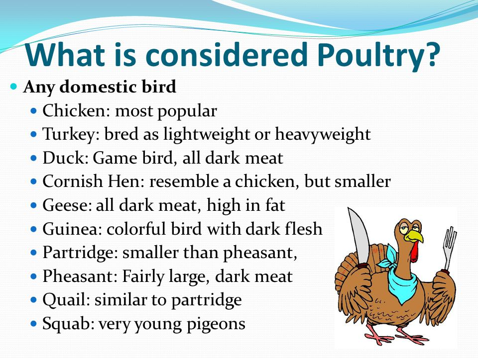 Meats poultry fish and shellfish ppt download for Is fish considered meat
