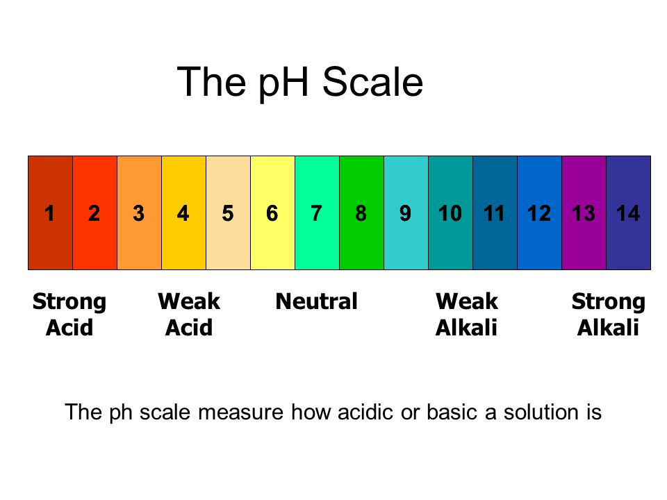 explain what ph scale measure An introduction to acids, bases, and the ph scale  acidity and alkalinity are  measured with a logarithmic scale called ph here is why: a strongly acidic  solution.