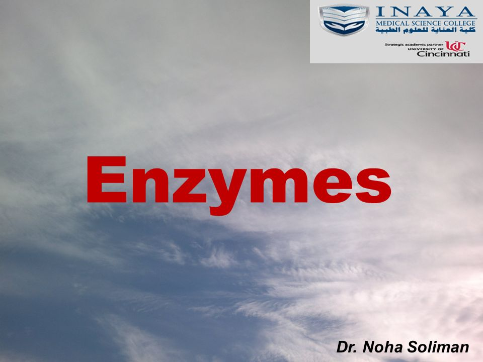 Enzymes Dr. Noha Soliman