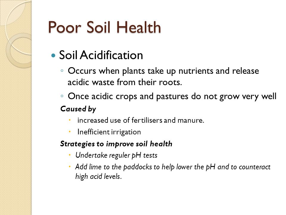 Poor Soil Health Soil Acidification