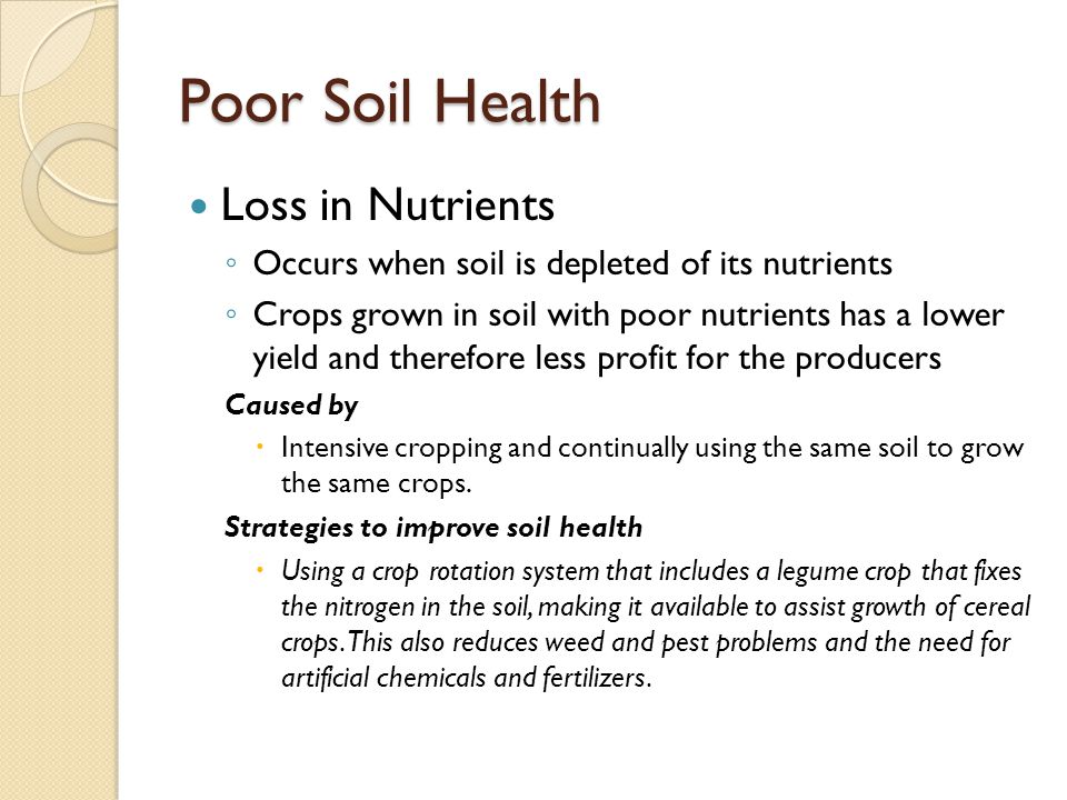 Poor Soil Health Loss in Nutrients