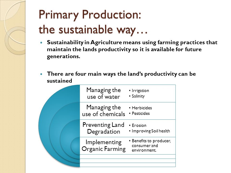 Primary Production: the sustainable way…