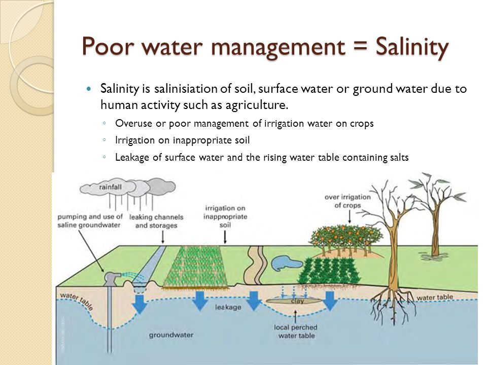 Poor water management = Salinity