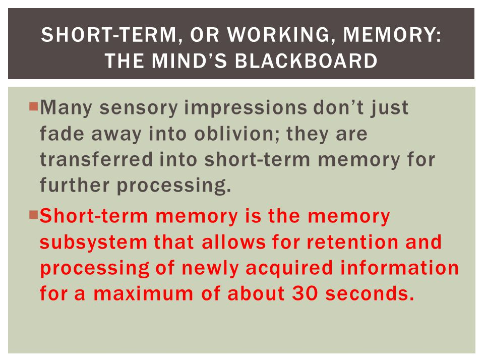 Short Term Memory : Memory chapter ppt download