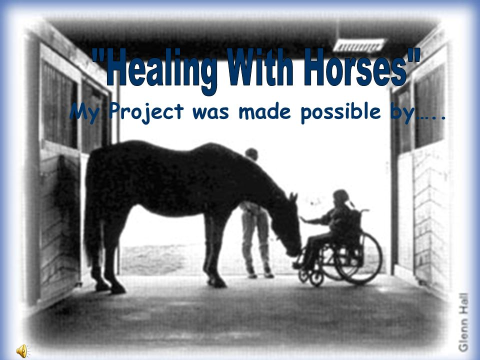 Healing With Horses My Project was made possible by…..
