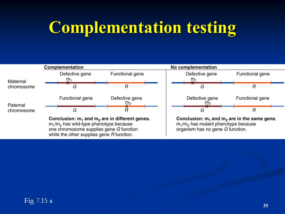 Complementation testing