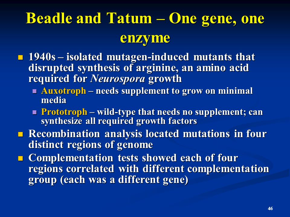 Beadle and Tatum – One gene, one enzyme