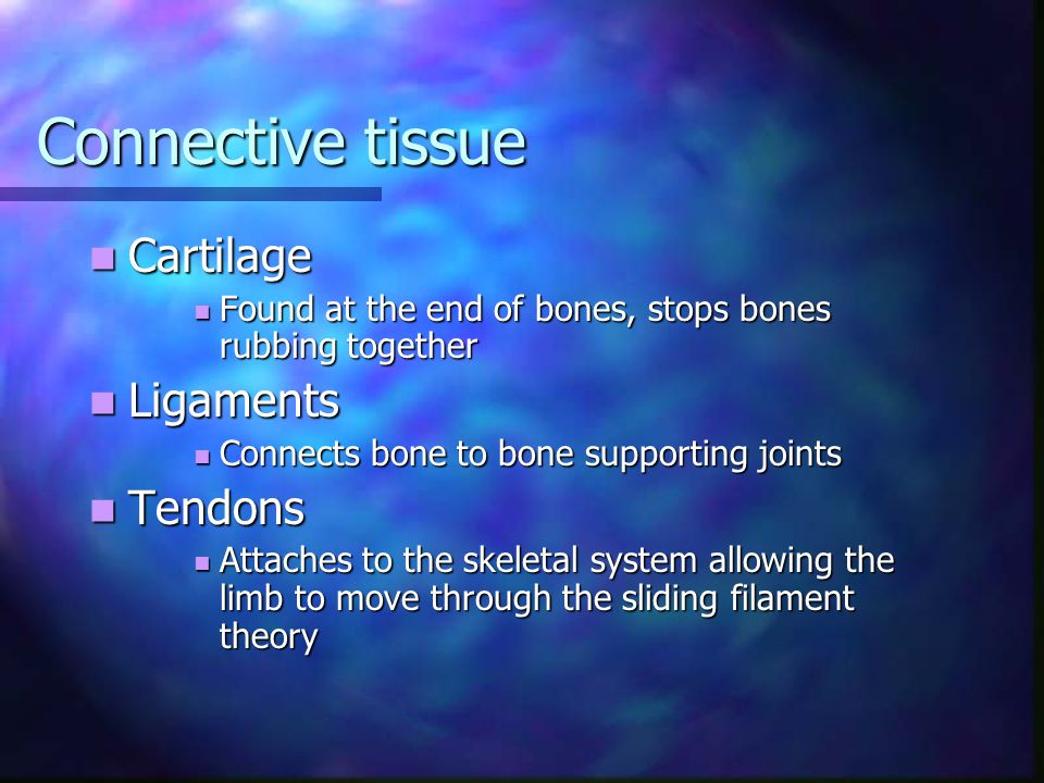Connective tissue Cartilage Ligaments Tendons