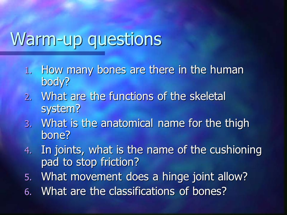 Warm-up questions How many bones are there in the human body