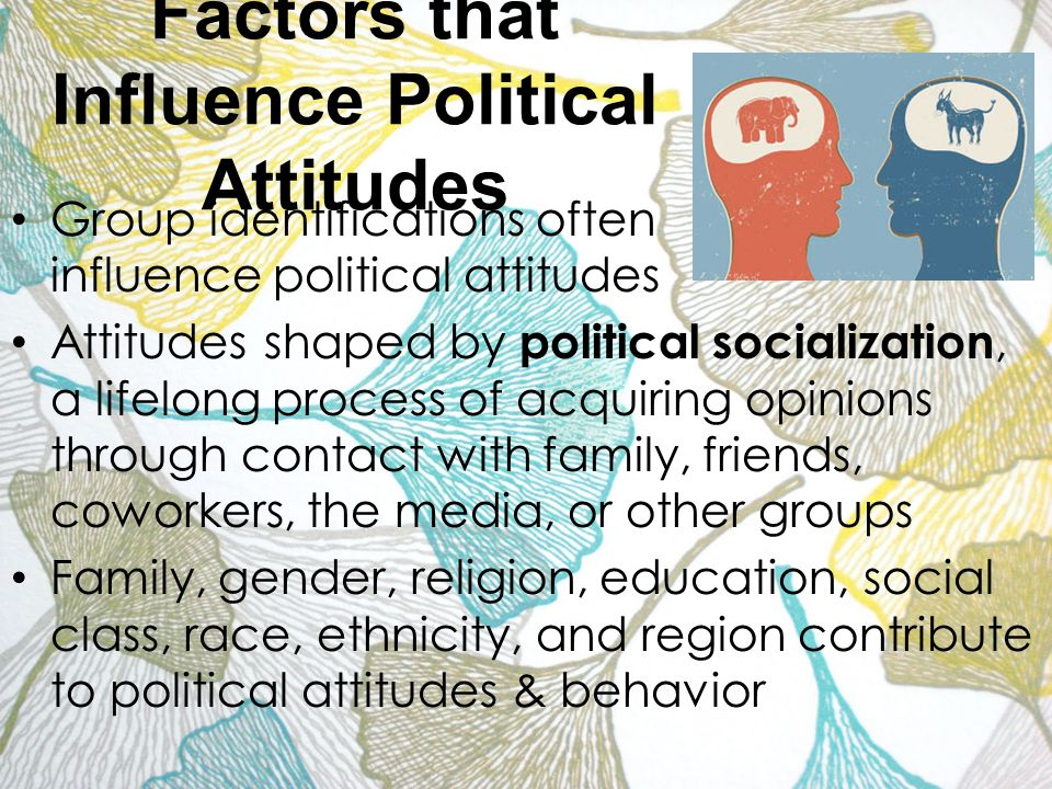 5 factors of political socialization Effects of political socialization your name institutional affiliation effects of political socialization political socialization can be defined as the process by which citizenship orientations are transmitted, hence is being conditioned by the shifts in social, political, and economic context at the community level, international levels, and .