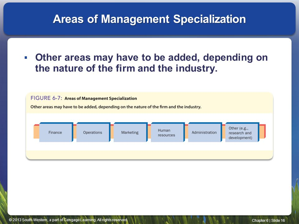 Areas of Management Specialization