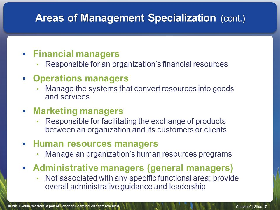 Areas of Management Specialization (cont.)
