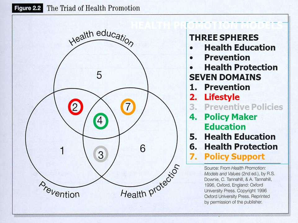 tannahill model Models of health promotion  how the self-empowerment model would be likely to be used in the context of smoking: providing access to medication,.