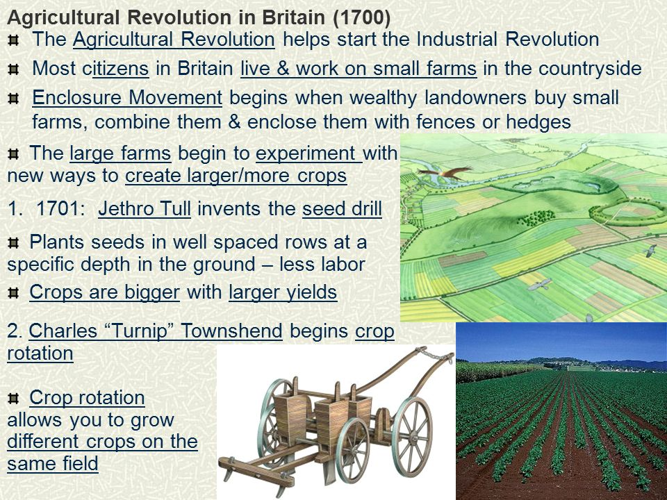the impact of the agricultural revolution in britain Religious and political conflicts between parliament and the monarch of england caused the glorious revolution it resulted in increased powers for parliament, more independence in the american colonies and the protestant domination of ireland the glorious revolution, which occurred in 1688, set.