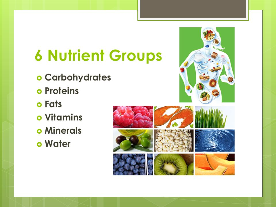 6 Nutrient Groups Carbohydrates Proteins Fats Vitamins Minerals Water