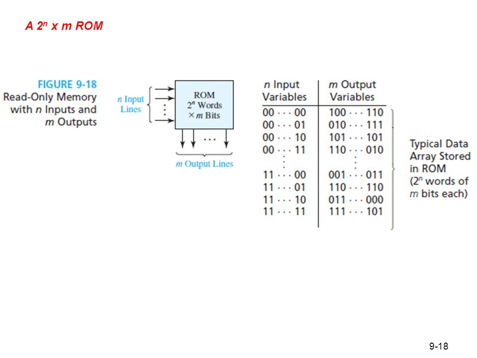 Figure 9.19 Basic ROM Structure