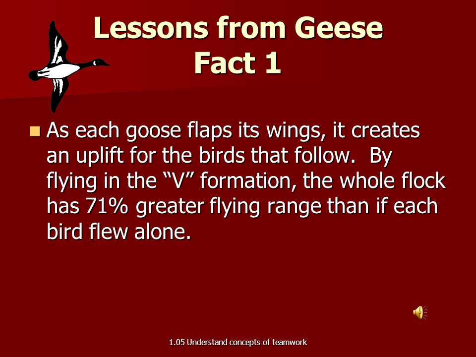 Lessons from Geese Fact 1
