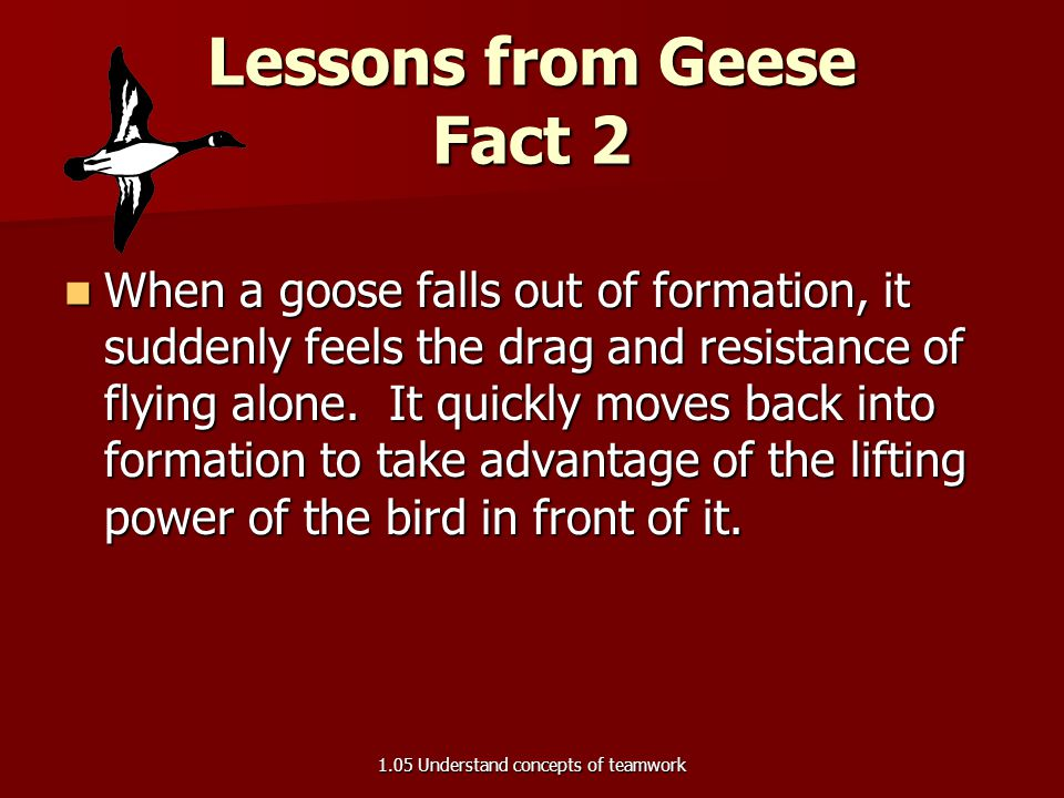Lessons from Geese Fact 2