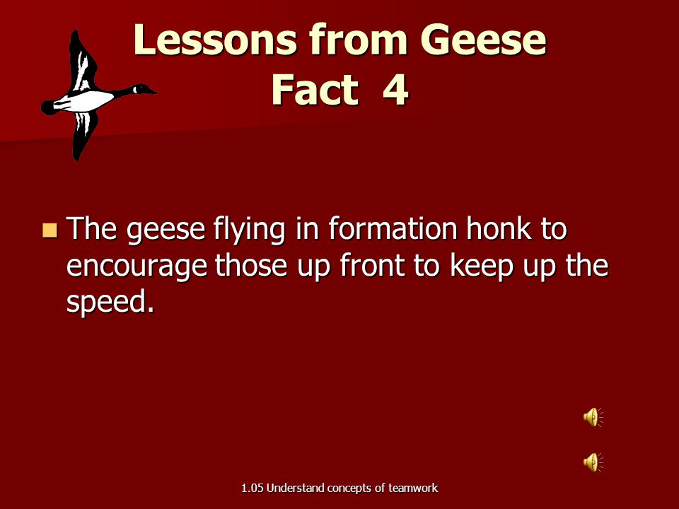 Lessons from Geese Fact 4