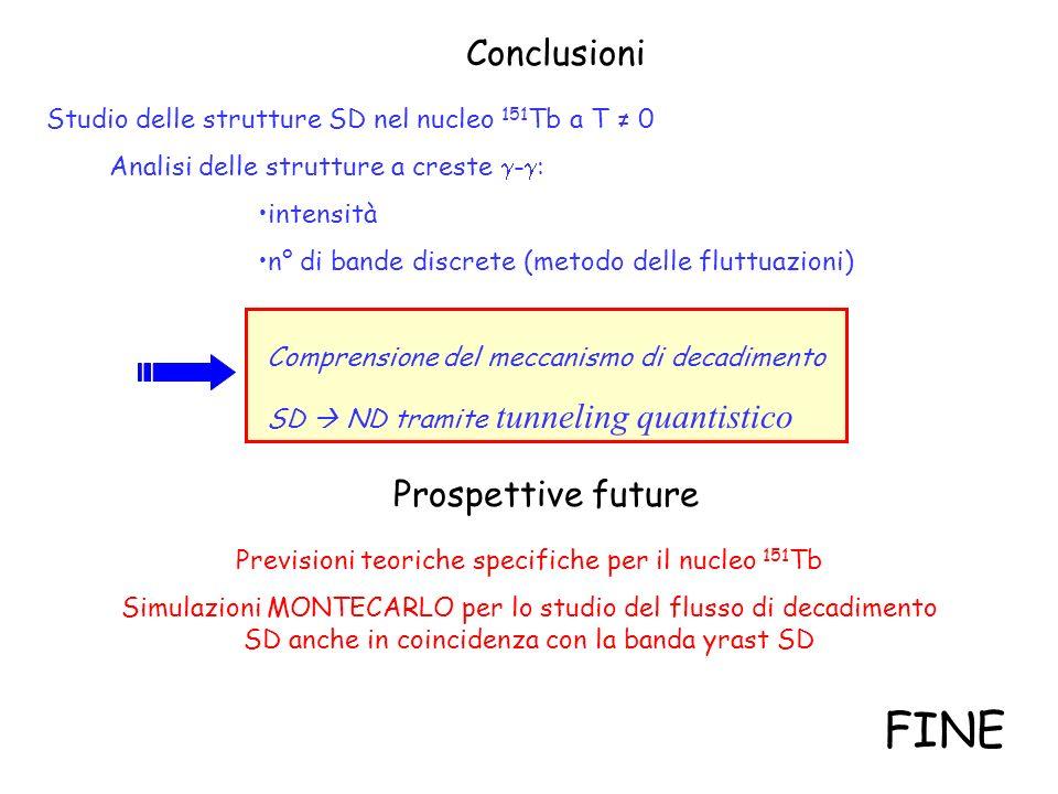 FINE Conclusioni Prospettive future