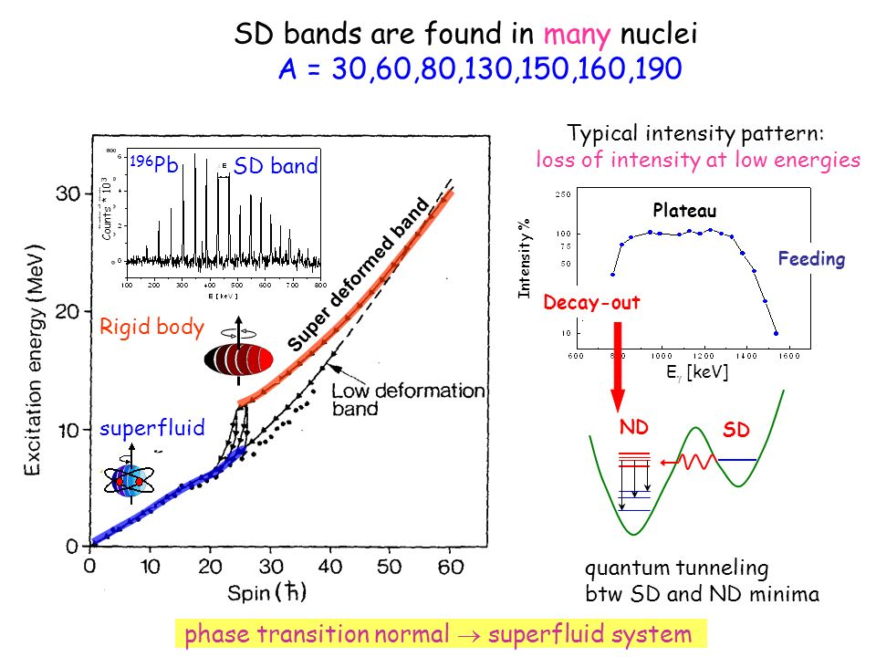SD bands are found in many nuclei A = 30,60,80,130,150,160,190