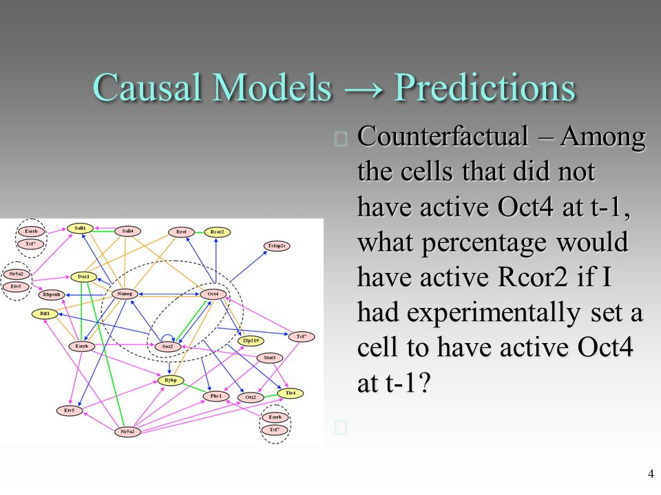 causality research 141 chapter 5 causation and research design causal explanation nomothetic causal explanation idiographic causal explanation research designs and criteria for causal .