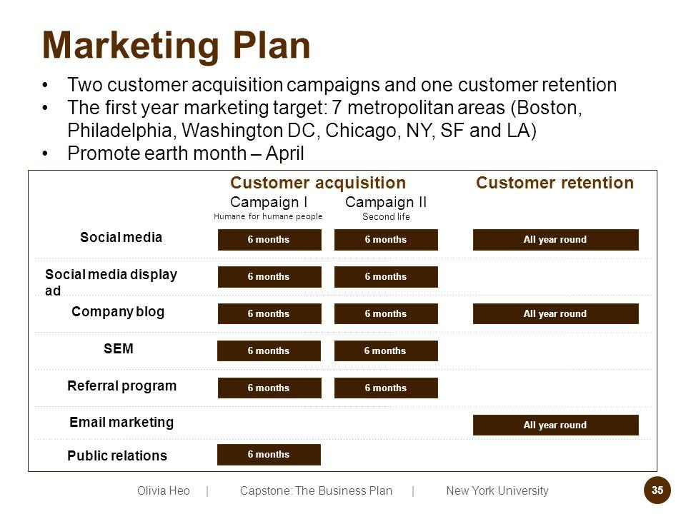 6 months business plan