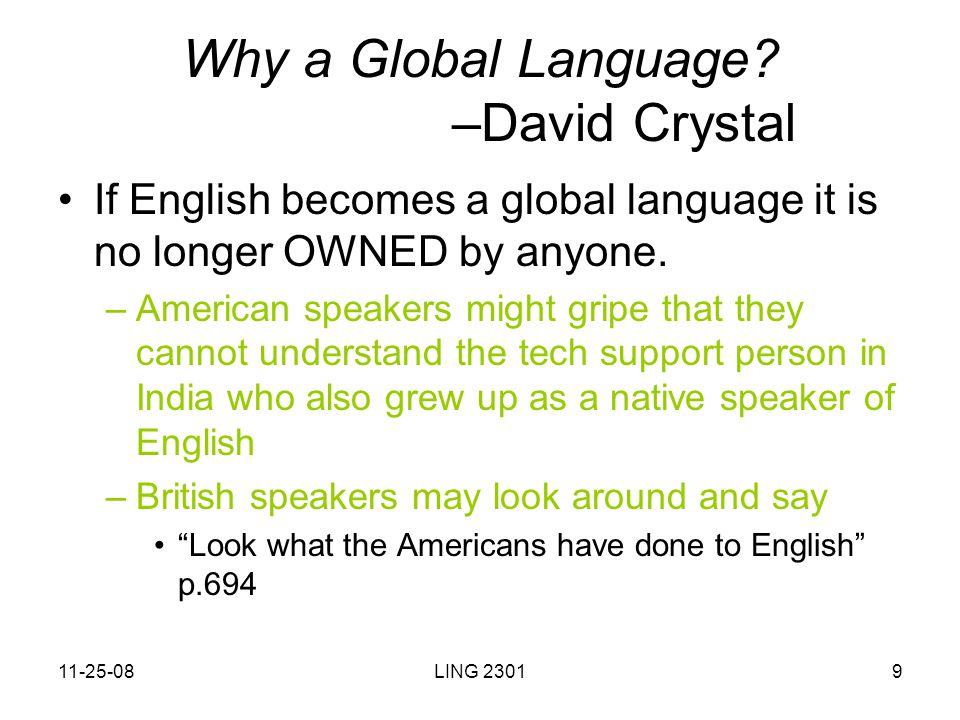 what is the future of english as a global language essay