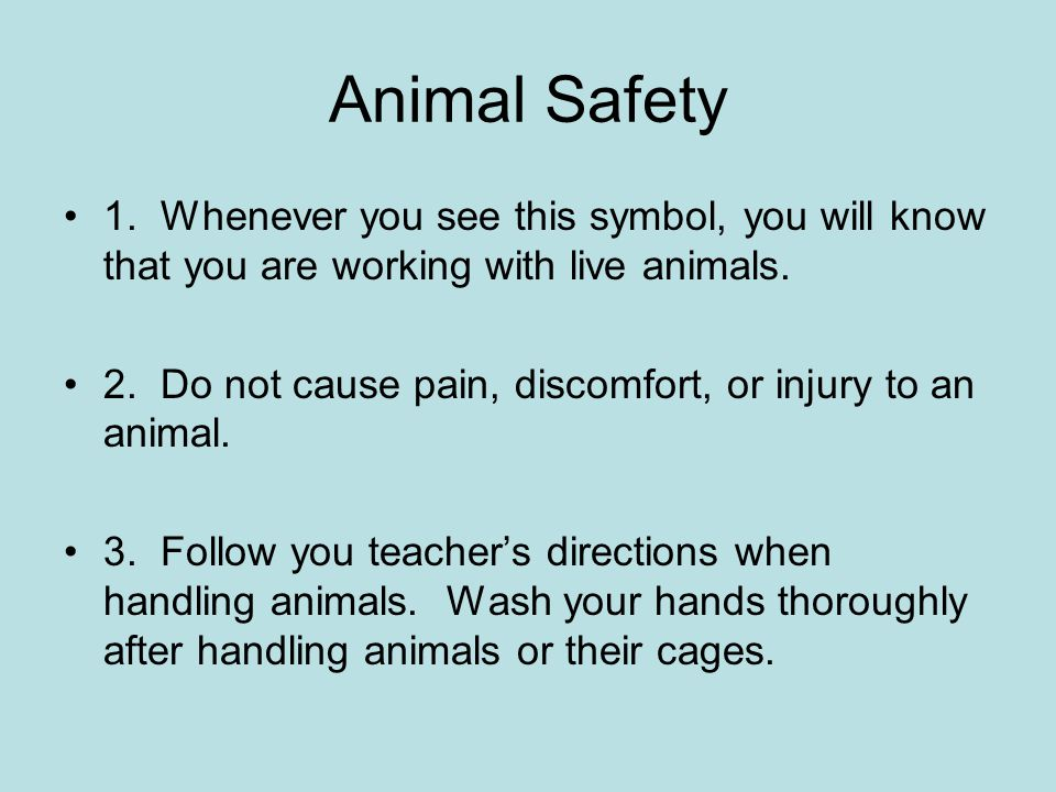 animal safety symbol - photo #46