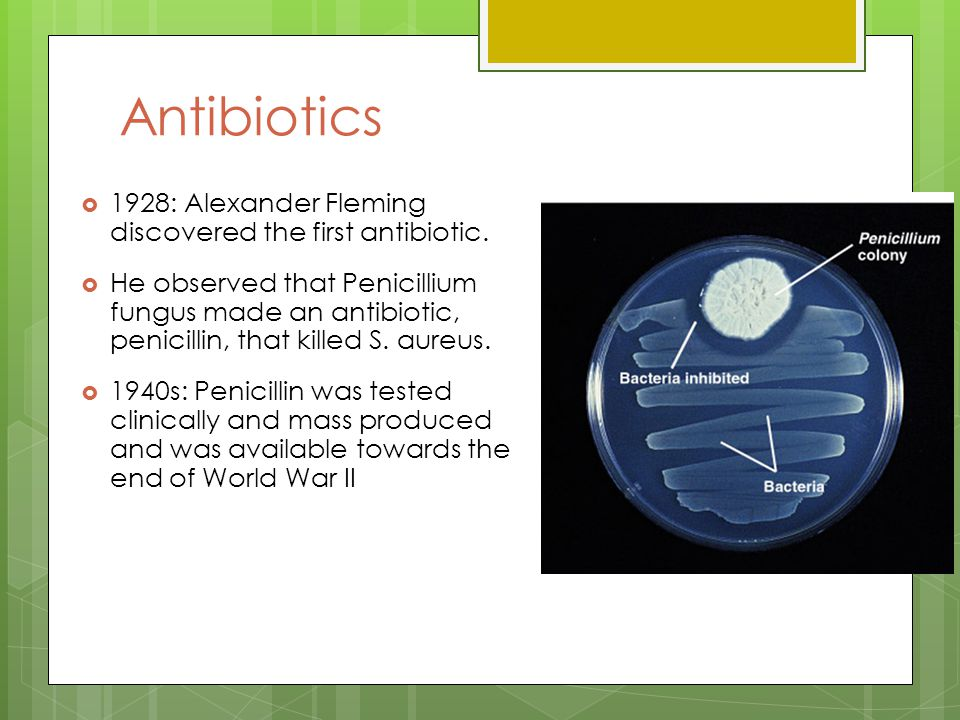 penicillin the first antibiotic history essay Penicillin penicillin was the first modern  he realized that the secretion could be the first antibiotic if it could be  lesson 155 history essay.