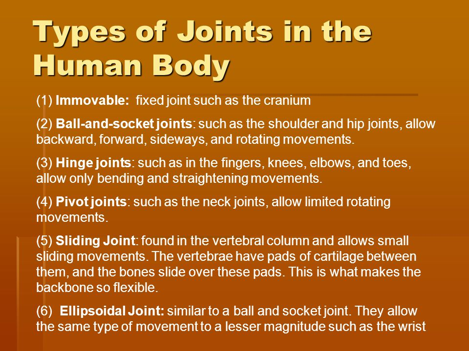 Joints Amp Articulations Ppt Video Online Download