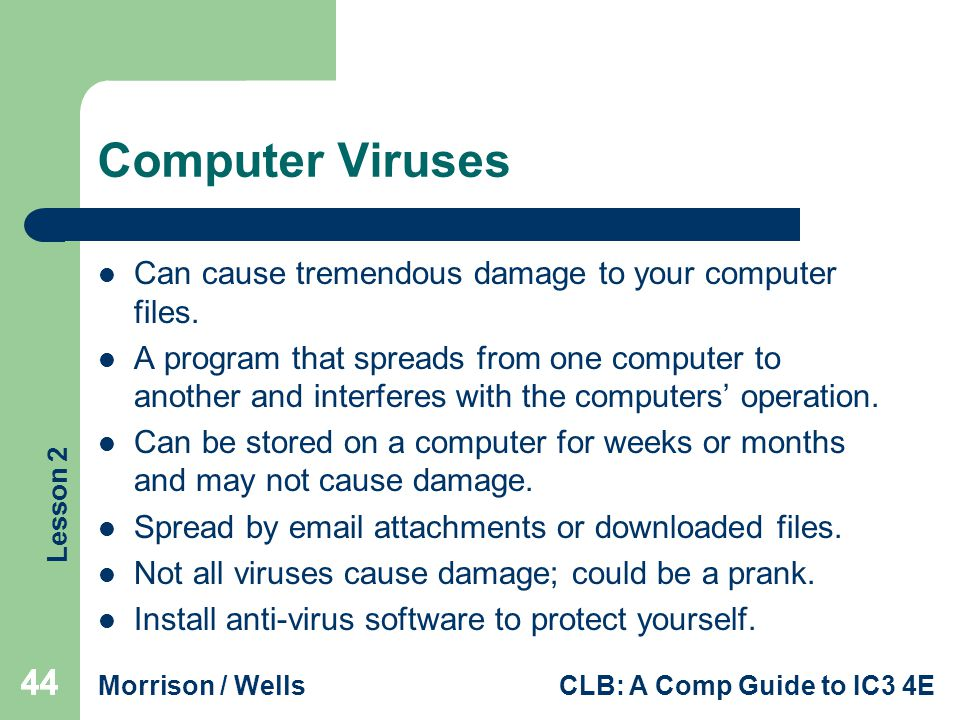 Computer Viruses Can cause tremendous damage to your computer files.