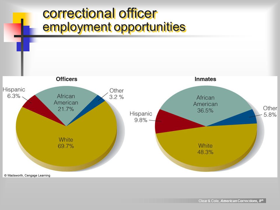 Correctional officer job description - Correctional officer jobs ...