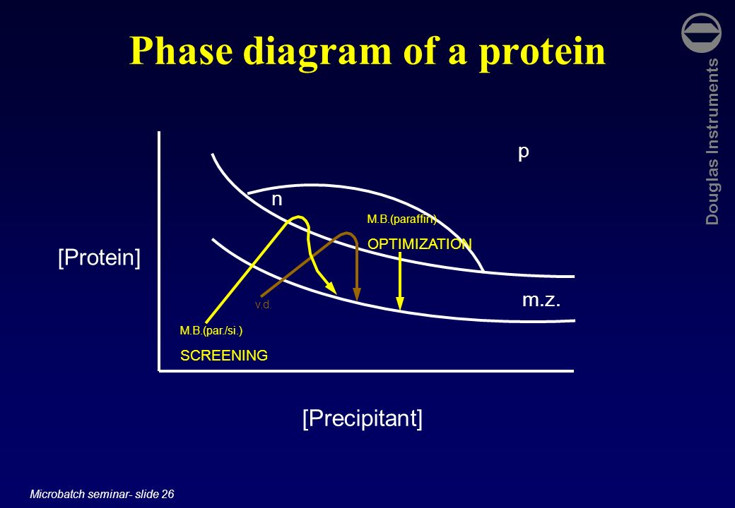 Phase diagram of a protein