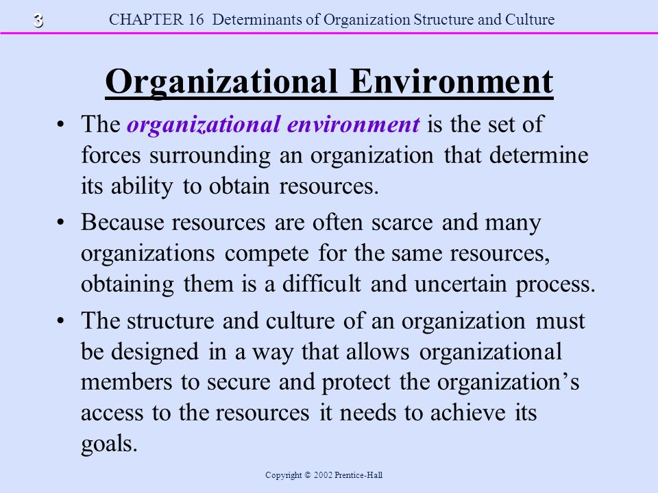 organization within its environment