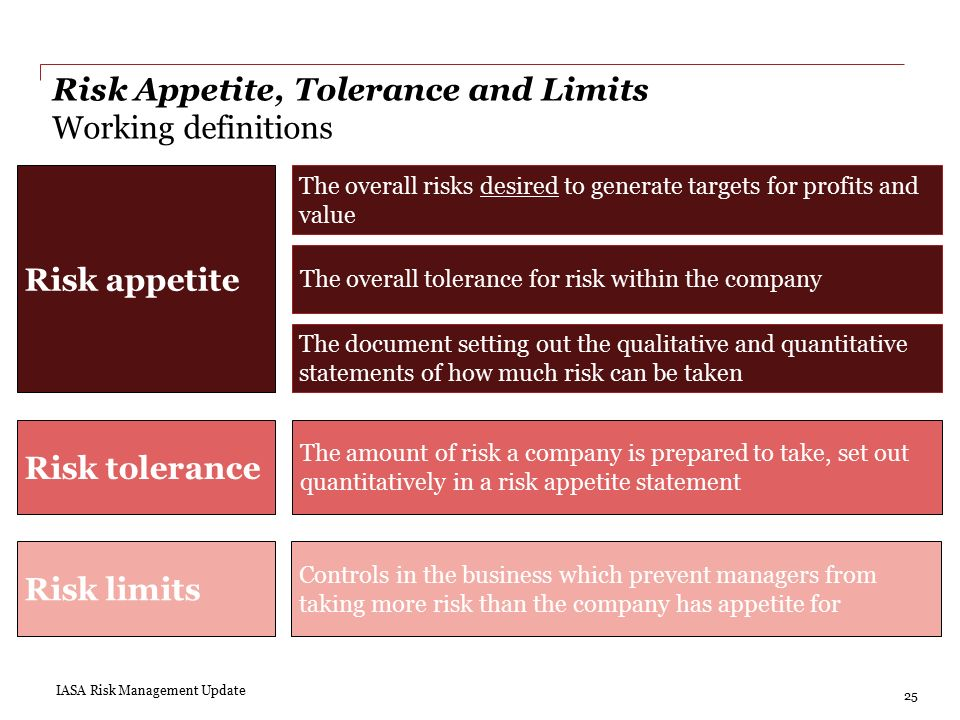 Risk management industry update ppt video online download for Risk appetite template