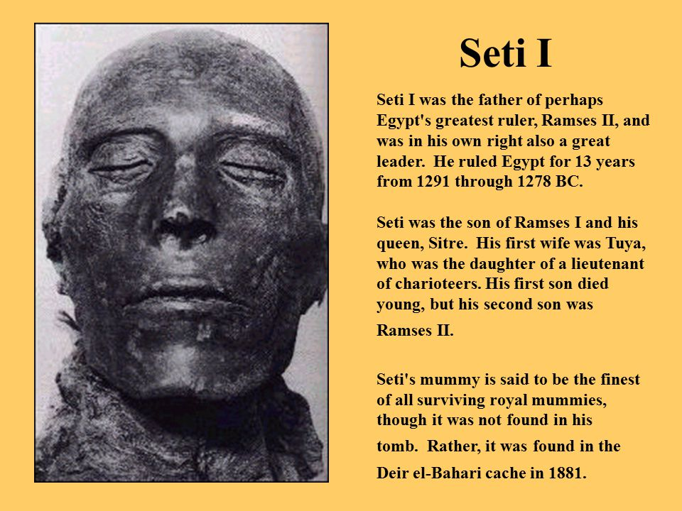seti i greatest of warrior pharaohs Seti i ,was a great warrior pharaoh of the 19th dynasty he was son of ramesses i and was the father of ramesses ii the great seti i ruled egypt.