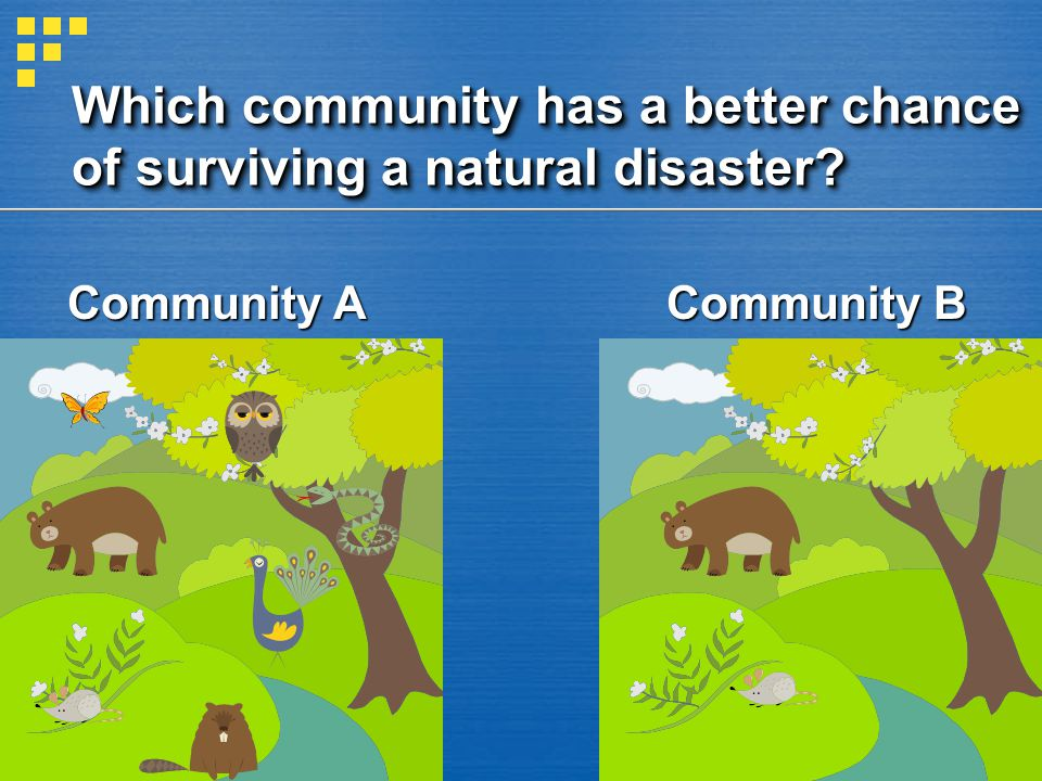 Which community has a better chance of surviving a natural disaster